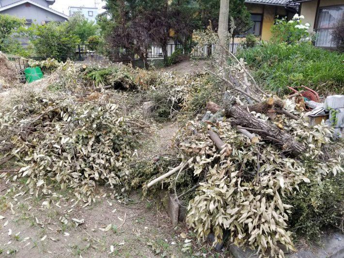岡山市北区横尾_伐採された庭木